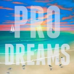 Album : Pro Dreams [2015] album cover