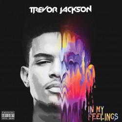 Album : In My Feelings [2015] album cover