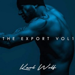 Album : The Export Vol. I [2016] album cover